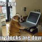 Your Stocks are Down